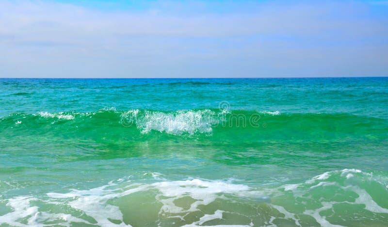 Panamá, FL, verde blu del golfo del Messico innaffia immagini stock libere da diritti