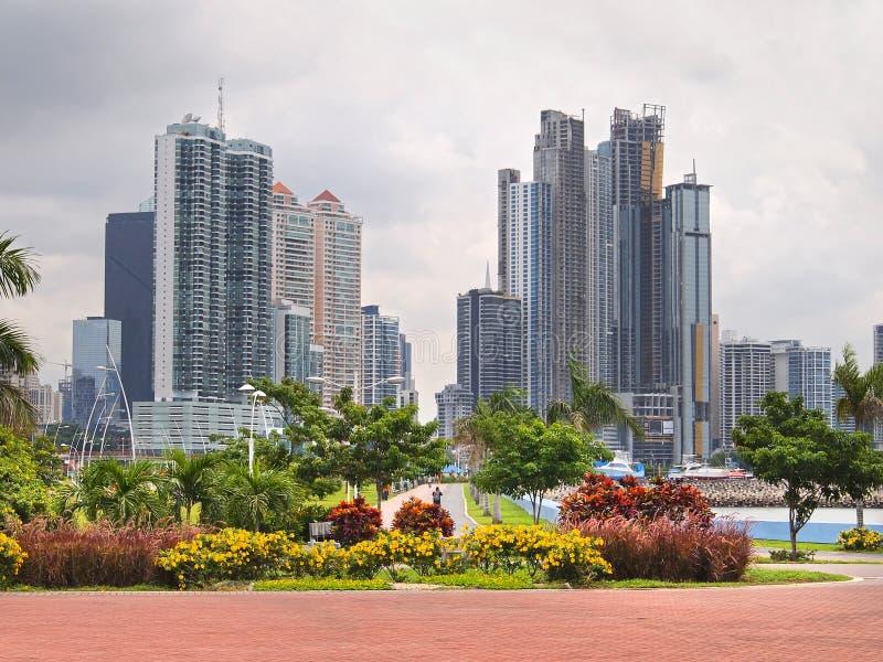 Panama City skyskrapa och blommor royaltyfri foto
