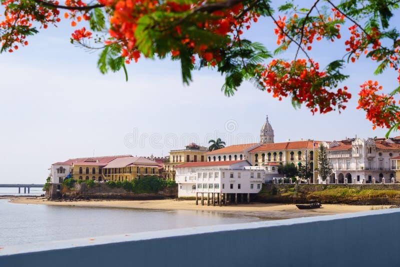 Panama City view old casco viejo antiguo stock photo