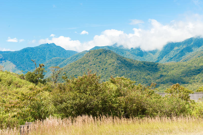 Panama De Fortuna National Park royalty free stock photo