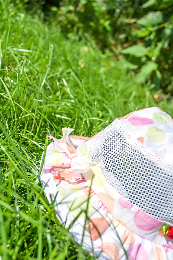 Download Panama on green grass stock image. Image of back, clean - 36977139