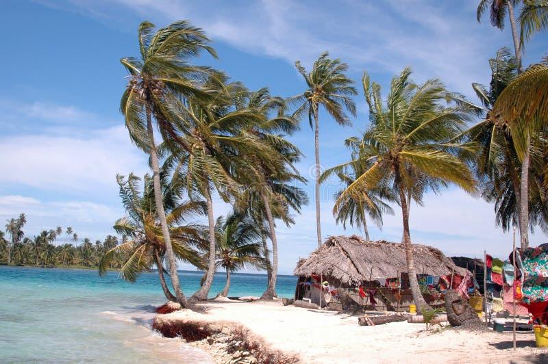Panama kuna indian house on island stock images