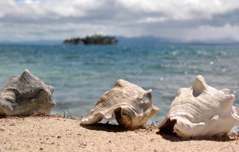 Panama1103 photos libres de droits