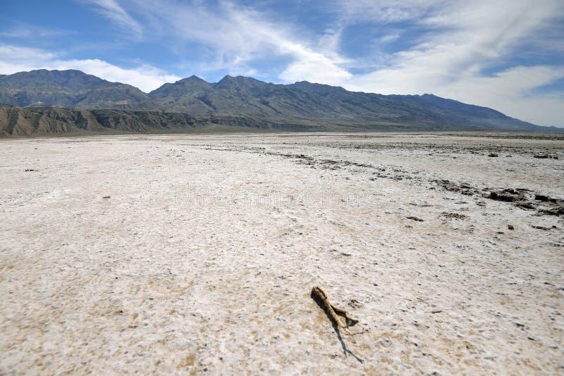 Panamint-Strecke steigt über Talsohle, Death Valley lizenzfreie stockfotos