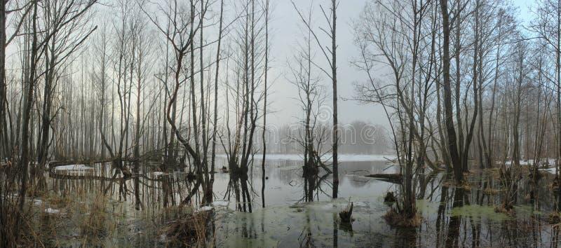 Panarama o fiume immagine stock