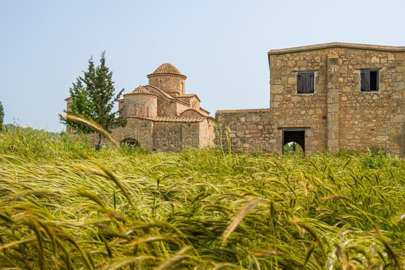Panayia Kanakaria 6th century Byzantine Monastery Church  behind barley hops royalty free stock image