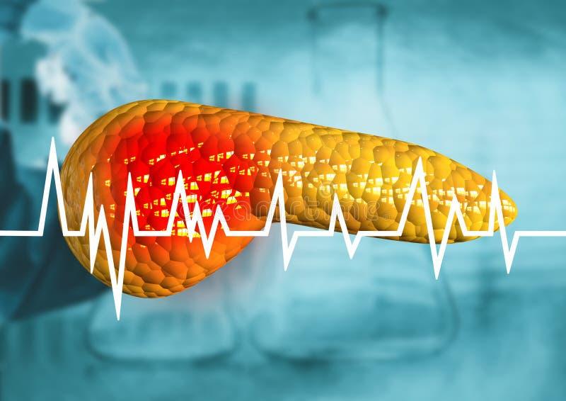 Pancreas, organo del corpo umano con la diagnosi di cancro, pancreatite, malattie serie royalty illustrazione gratis
