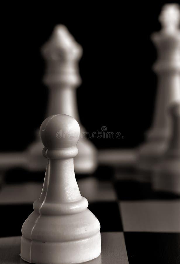 Pand op een schaakbord stock foto