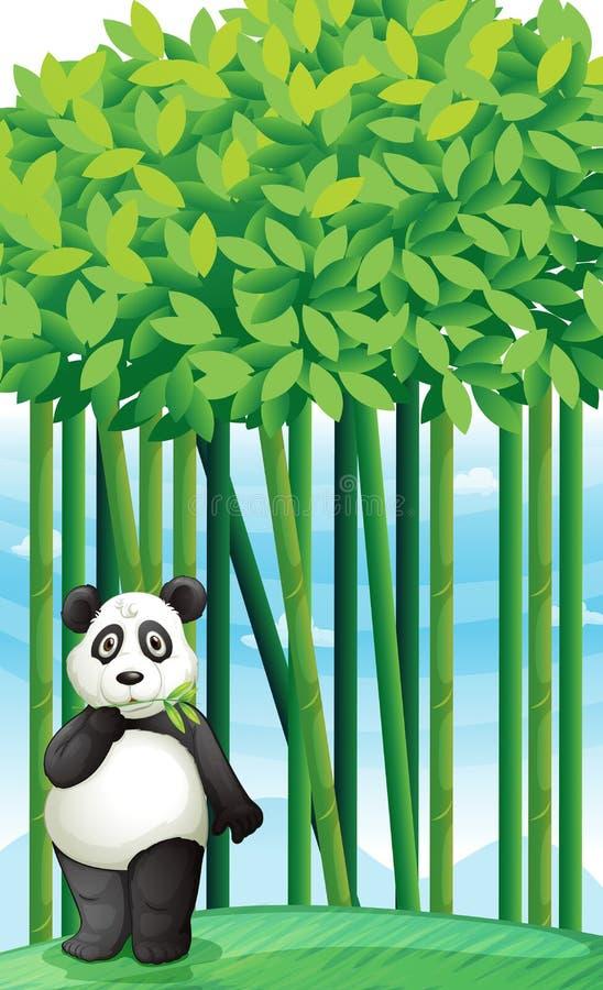 Panda illustration libre de droits