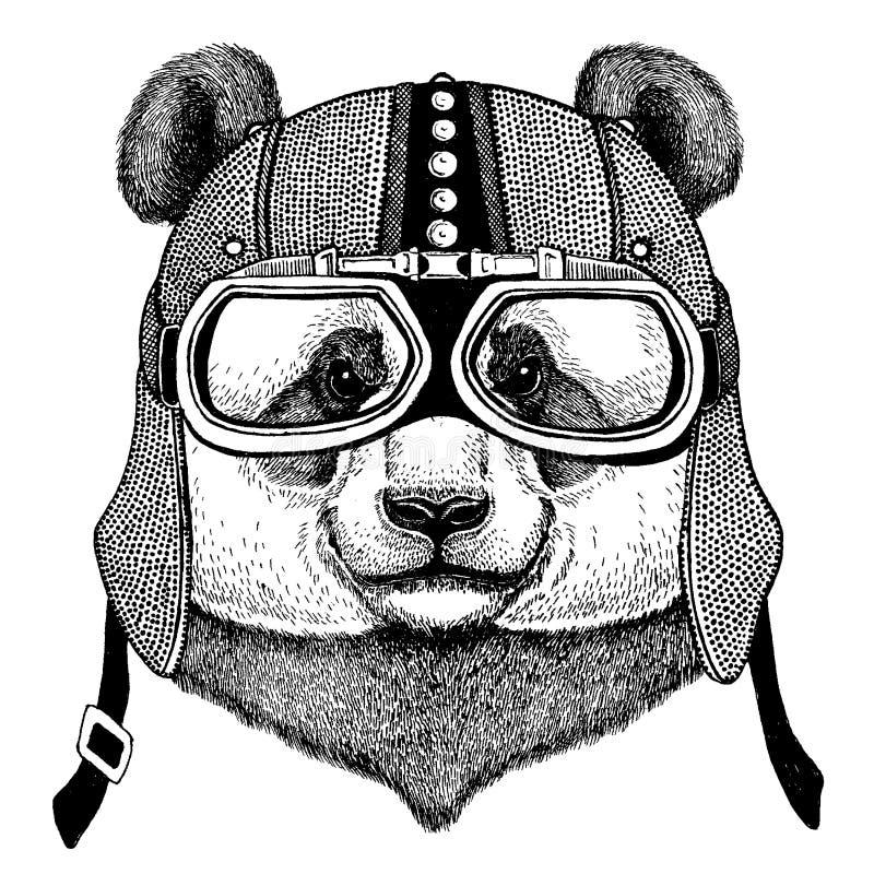 Panda, bambusa niedźwiadkowy jest ubranym motocykl, aero hełm Rowerzysta ilustracja dla koszulki, plakaty, druki ilustracja wektor