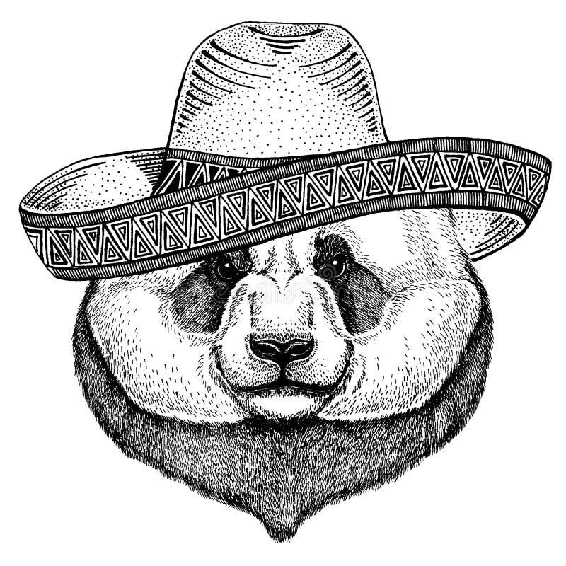 Panda, bambusa niedźwiedź jest ubranym tradycyjnego meksykańskiego kapelusz Klasyczny pi?ropusz, fiesta, przyj?cie royalty ilustracja