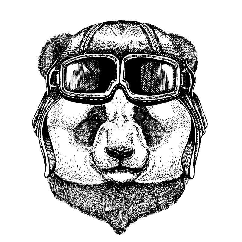 Panda Bambusa niedźwiedź Zwierzęcy jest ubranym lotnika hełm z szkłami target1888_0_ polowania labiryntu obrazka węża wektor ilustracja wektor