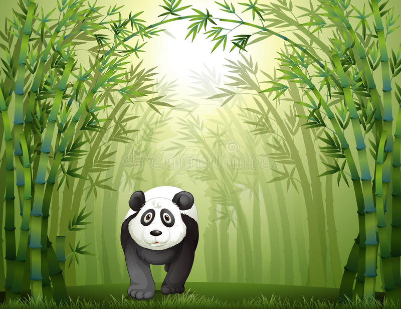 A Panda Bear And A Bamboo Forest Royalty Free Stock Images