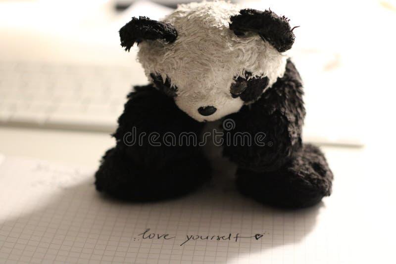 Panda Bear Plush Toy stock photos