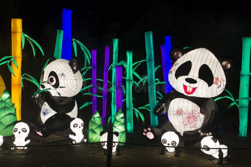 Chinise panda bear lightobject in the night stock photography