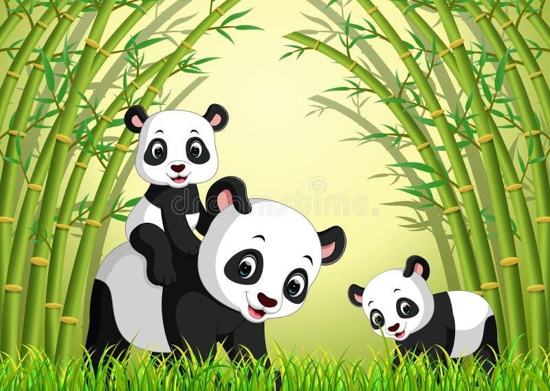 Panda deux mignon dans une forêt en bambou illustration libre de droits