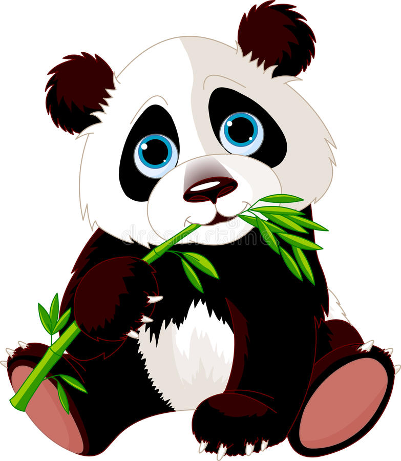 Panda eating bamboo vector illustration