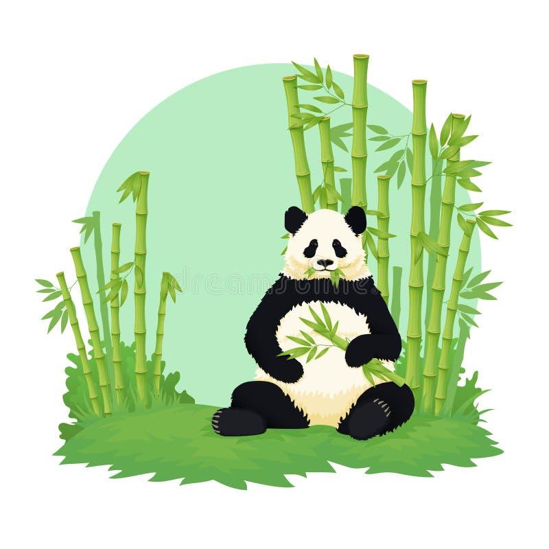 Panda gigante que se sienta y que come con el bosque de bambú en el fondo Oso blanco y negro que sostiene y que mastica el bambú stock de ilustración
