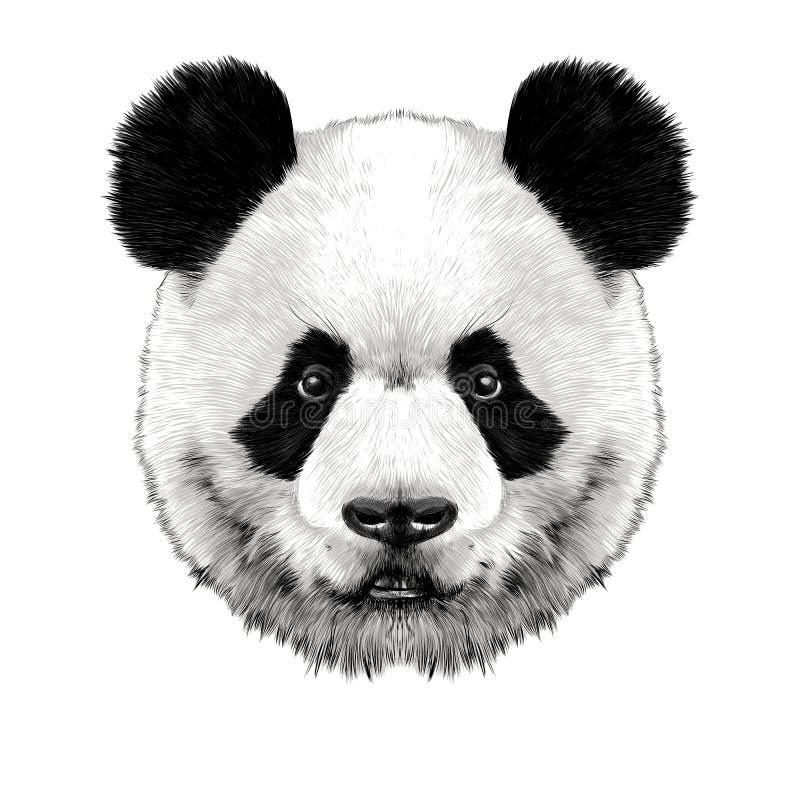 Panda Head stock abbildung