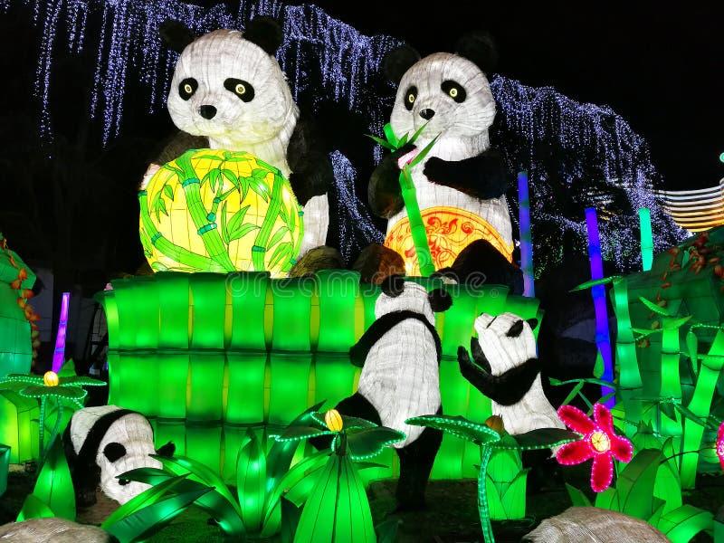 Panda Lantern em Zigong imagens de stock