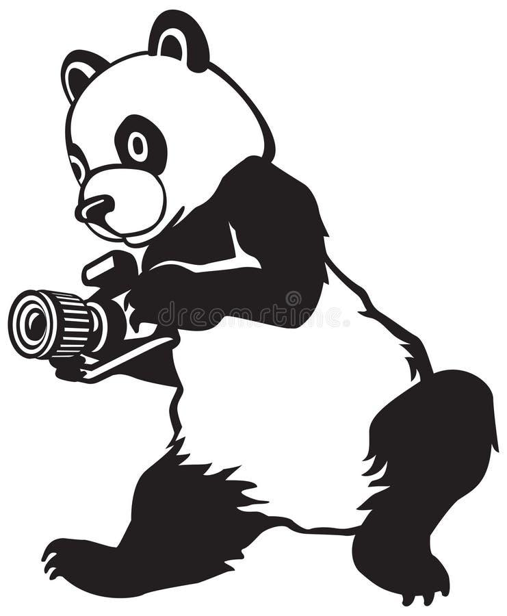Panda, le photographe de presse illustration libre de droits