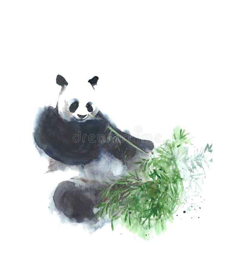 Panda mangeant l'illustration en bambou de peinture d'aquarelle d'isolement sur le fond blanc illustration de vecteur