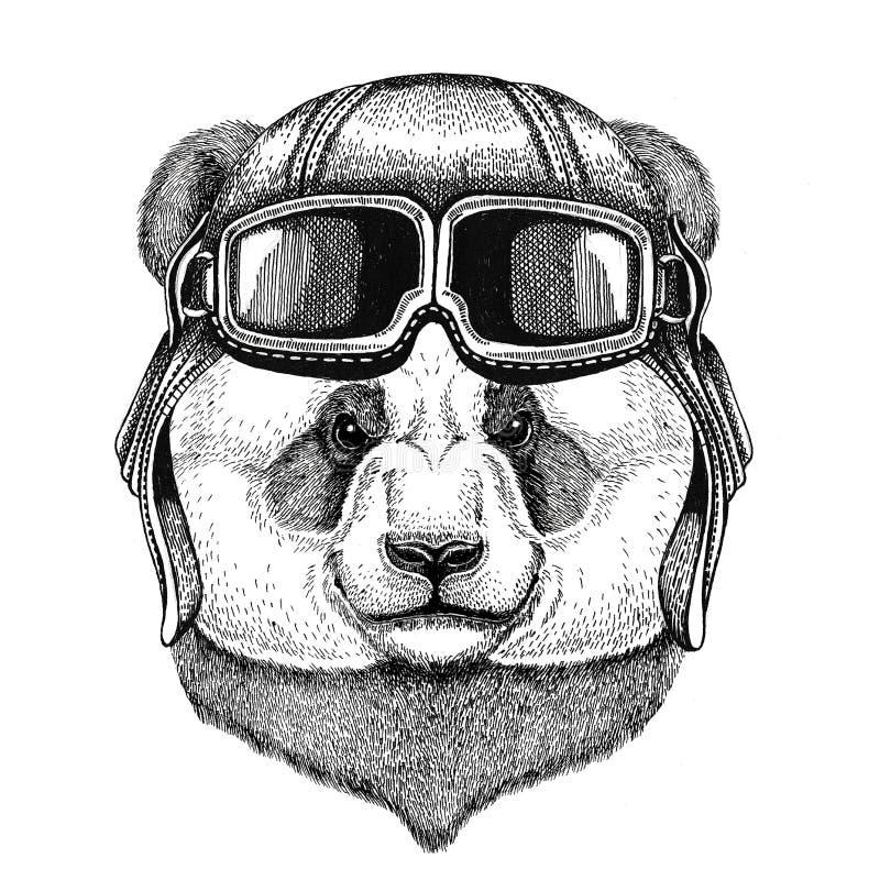 Panda niedźwiedź, bambusa hełma niedźwiadkowy jest ubranym rzemienny lotnik, rowerzysta, motocykl ręka rysująca ilustracja dla ta royalty ilustracja