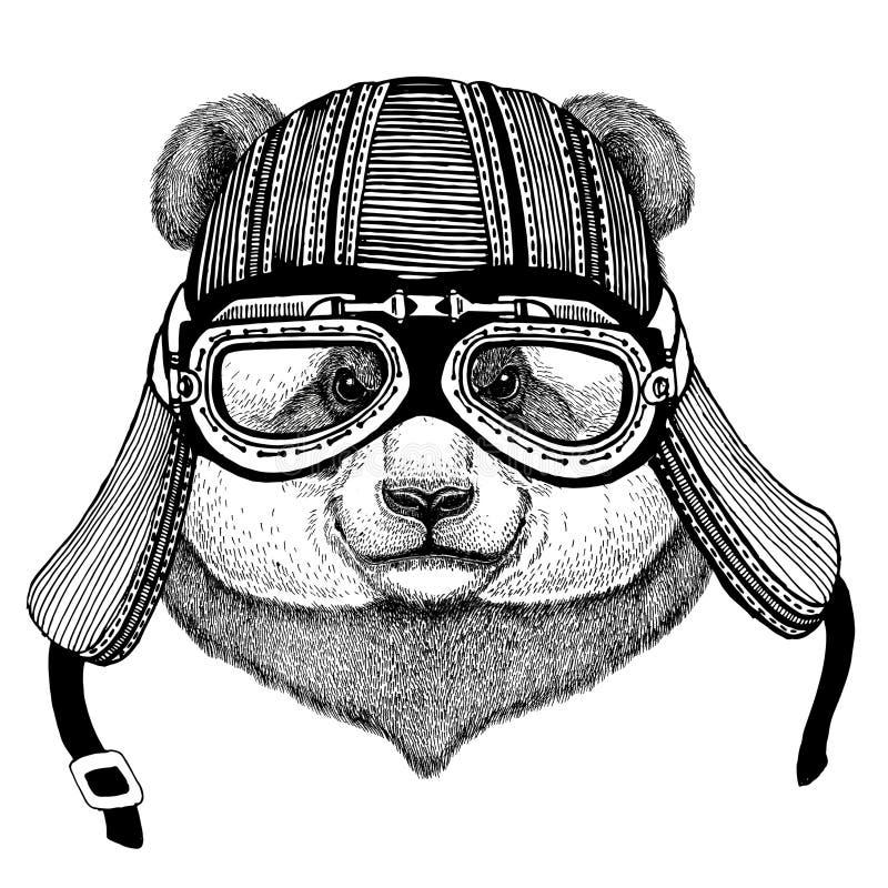 Panda niedźwiedź, bambusa niedźwiedzia ręka rysujący zwierzęcy jest ubranym motocyklu hełm dla koszulki wizerunek, tatuaż, emblem zdjęcie royalty free