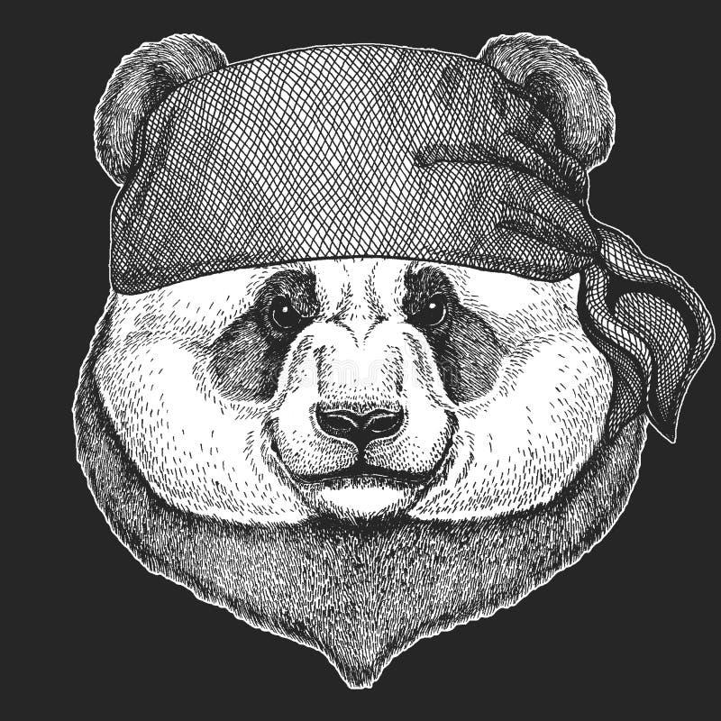 Panda niedźwiedzia Chłodno pirat, żeglarz, seawolf, żeglarz, rowerzysty zwierzę dla tatuażu, koszulka, emblemat, odznaka, logo, ł royalty ilustracja