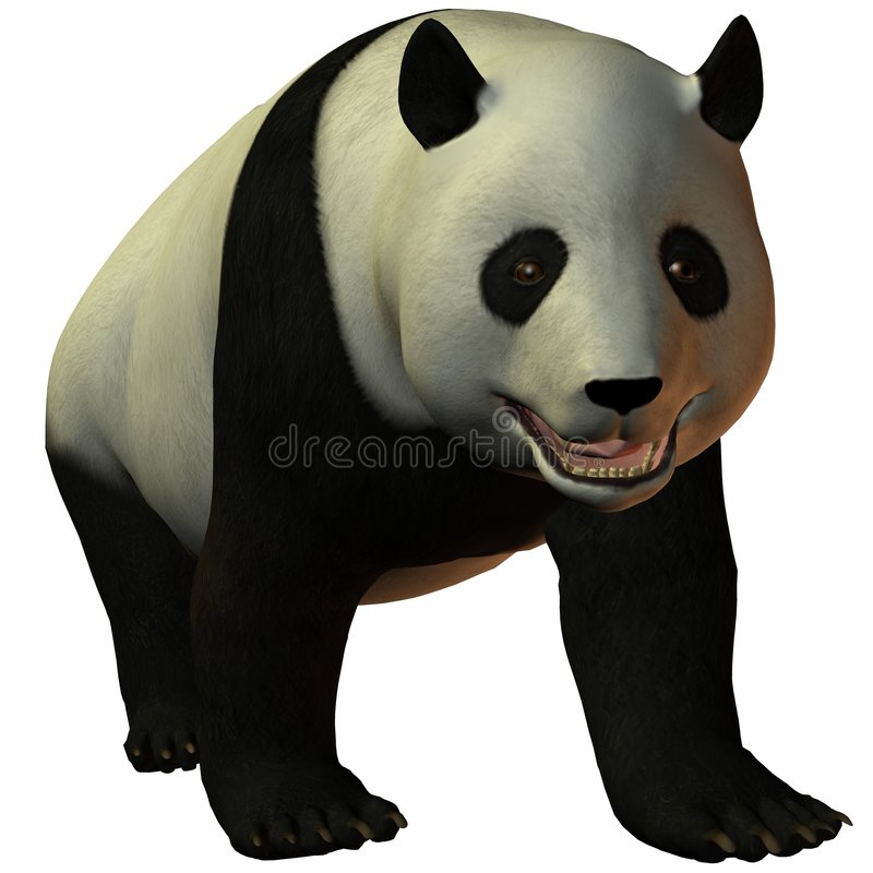 panda Toon διανυσματική απεικόνιση