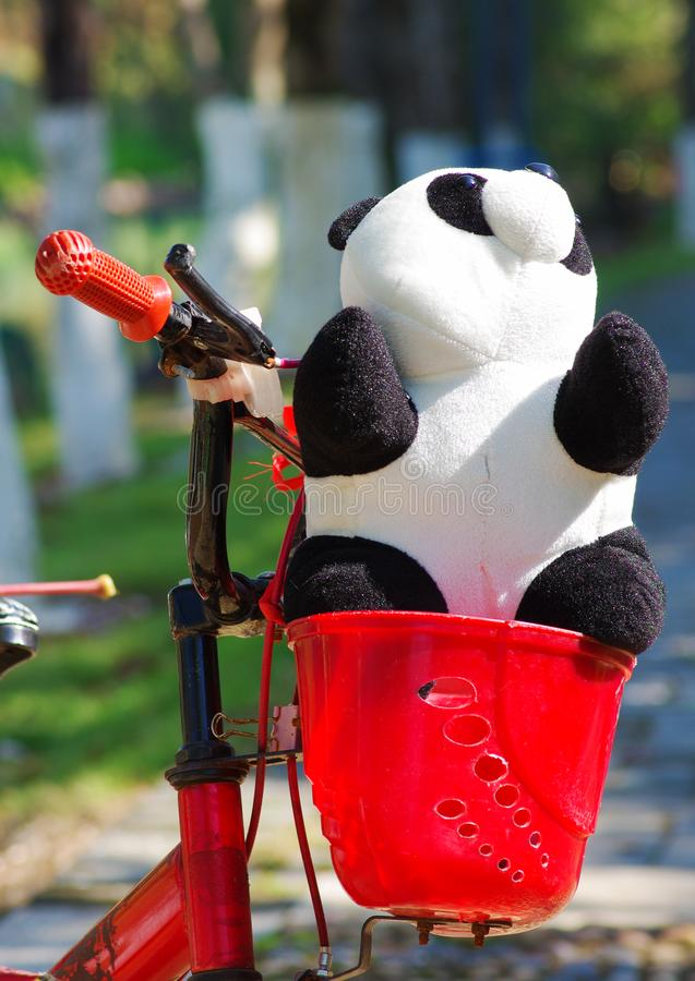 A panda toy on bicycle. Sunshine red panda toy bicycle bike child like love outdoor gift holiday natural white black stock image