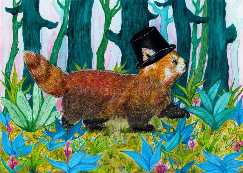Panda vermelha do cavalheiro extravagante que anda através de uma floresta colorida fotos de stock