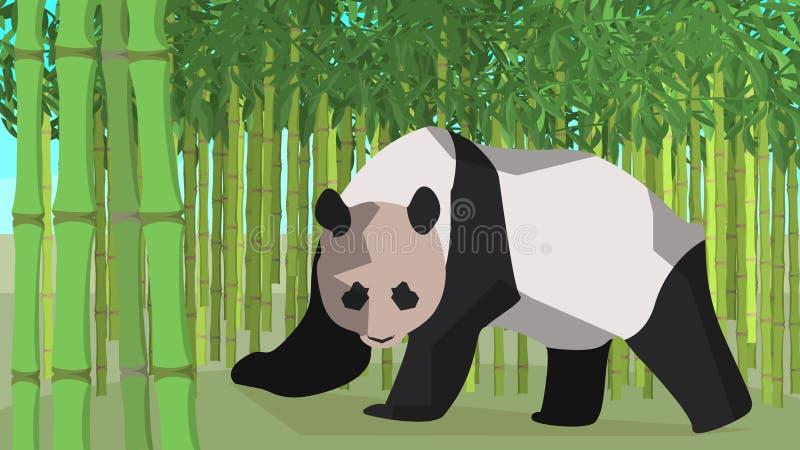 Panda w bambusowym gaju, zwierzę, natura ilustracji