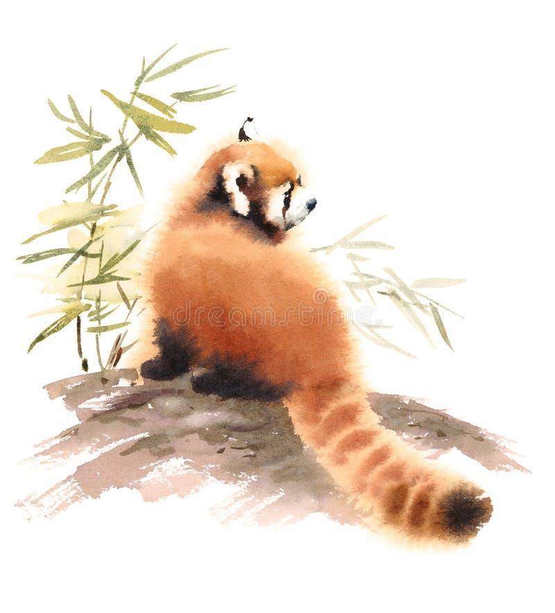 Panda Watercolor Animal Illustration Hand rouge a peint illustration libre de droits