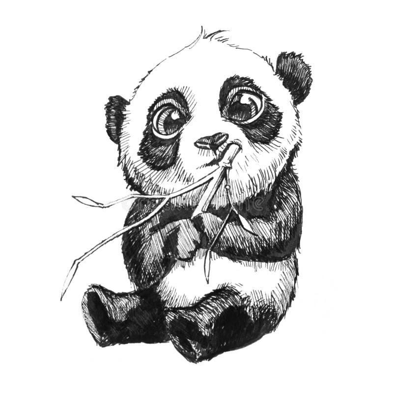 Pandabjörn som äter drog illustrationen för bambu den hand royaltyfri illustrationer