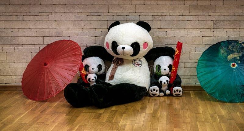 Pandafamiljdockor med paraplyer royaltyfria foton