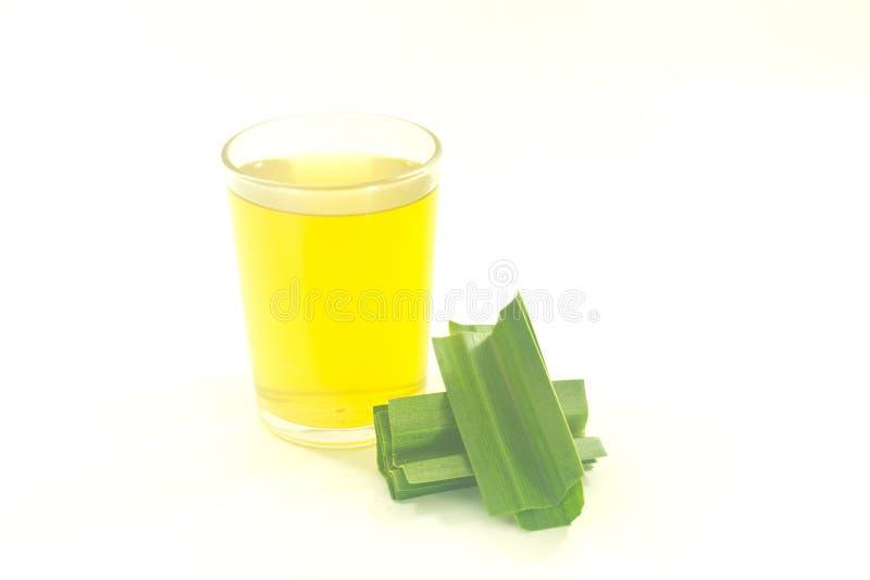 Pandan juice stock photo