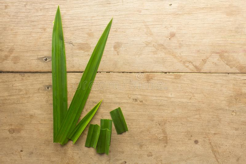 Pandan. Has the main benefits of quenching thirst and nourishing the heart royalty free stock image