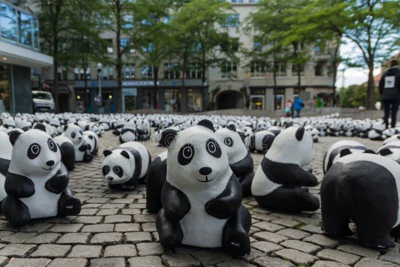 Pandas à Kiel