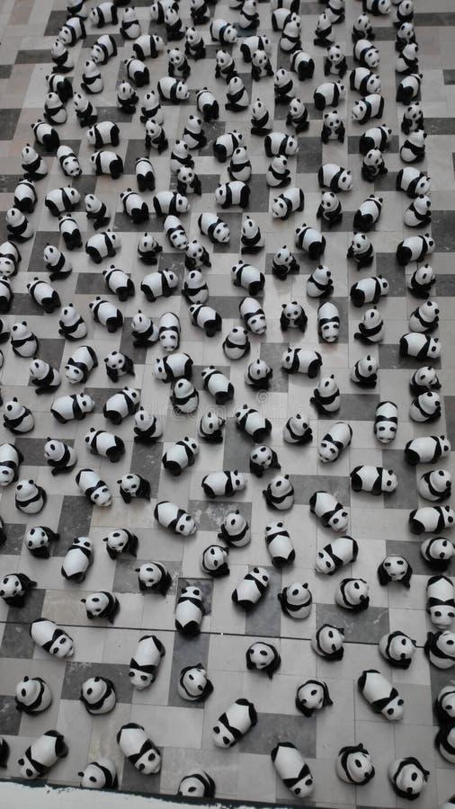 1600 pandas fotografía de archivo