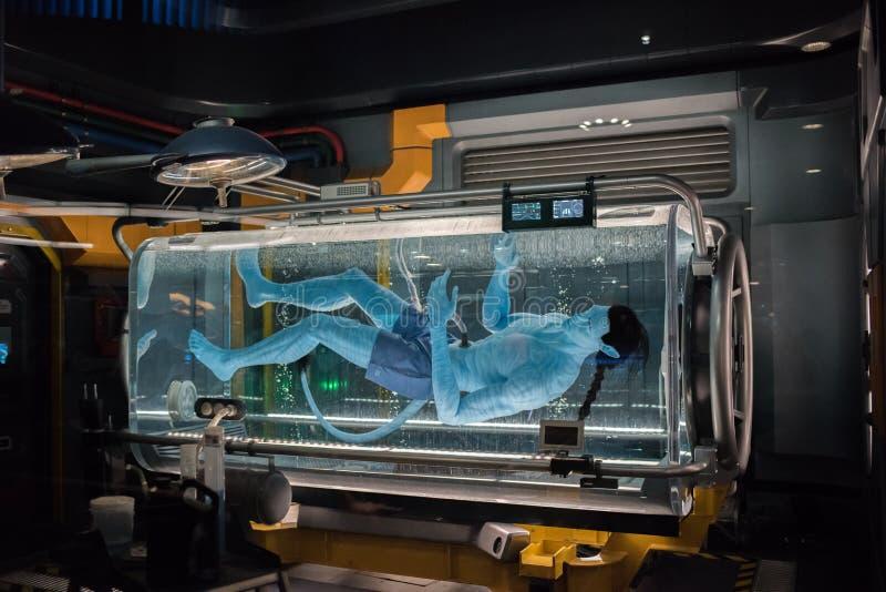 Pandory †'świat Avatar przy Zwierzęcym królestwem przy Walt Disney światem zdjęcie royalty free