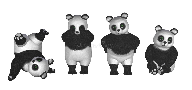 pandy ma ilustracji