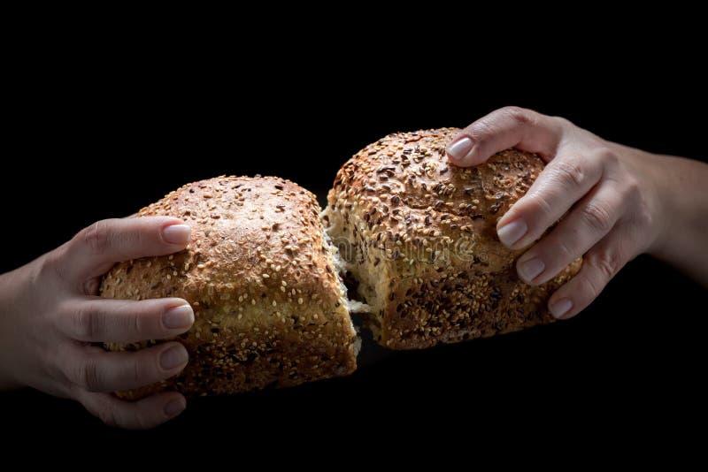 Pane casalingo nelle mani della donna fotografia stock