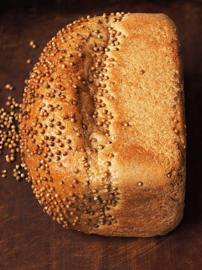 Pane con i semi di coriandolo su legno scuro Impilamento del fuoco immagini stock