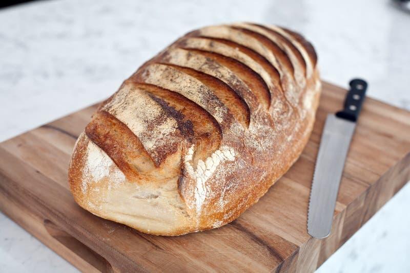 Pane crostoso di Freash immagine stock libera da diritti