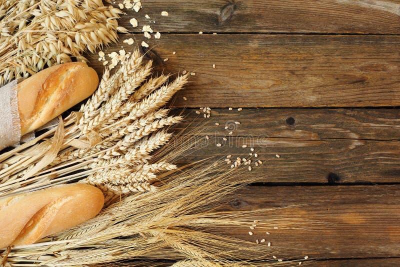 Pane e três tipos dos cereais - trigo, centeio e aveia em uma madeira imagem de stock