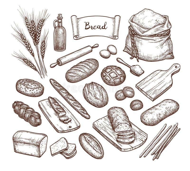 Pane ed ingredienti illustrazione vettoriale