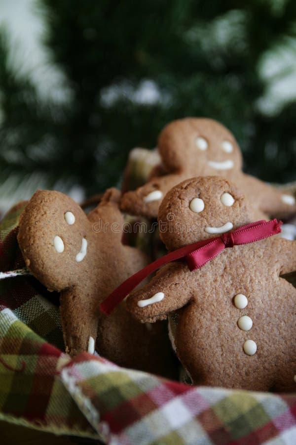 Pane il Babbo Natale attendente dello zenzero fotografia stock libera da diritti