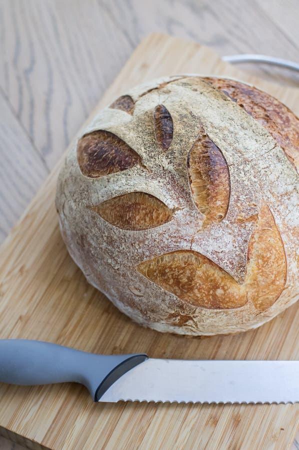 Pane integrale casalingo su legno immagini stock libere da diritti