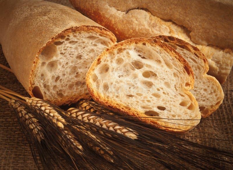 Tipi di pane e di orecchie fotografia stock immagine di for Tipi di case in italia